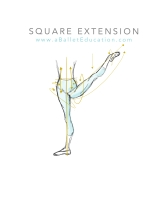 square extension what is a la seconde